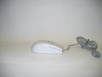 Computer mouse, image d