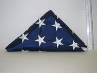 United States Flag, image b