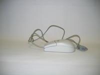 Computer mouse, image a